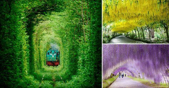 11 tuneluri UIMITOARE create de natură